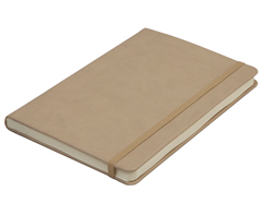 Flexi Notebook-ST331CA5